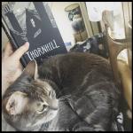 instagram thornhill